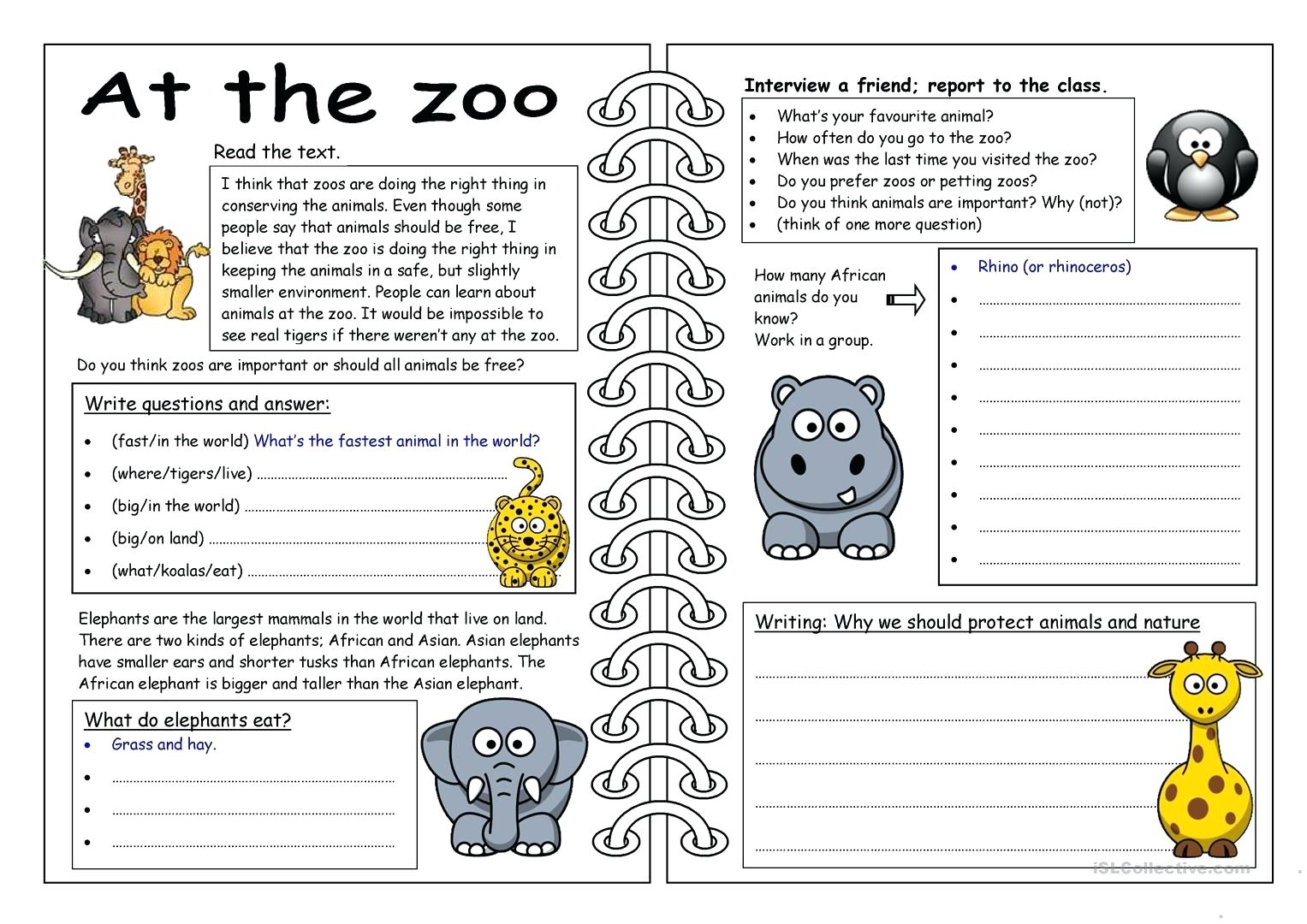 Animal Groups Worksheets