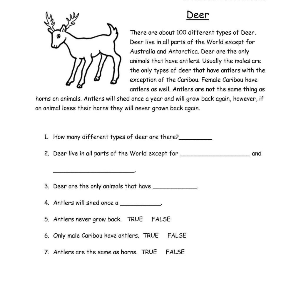 Reading Comprehension Worksheets For Grade 3