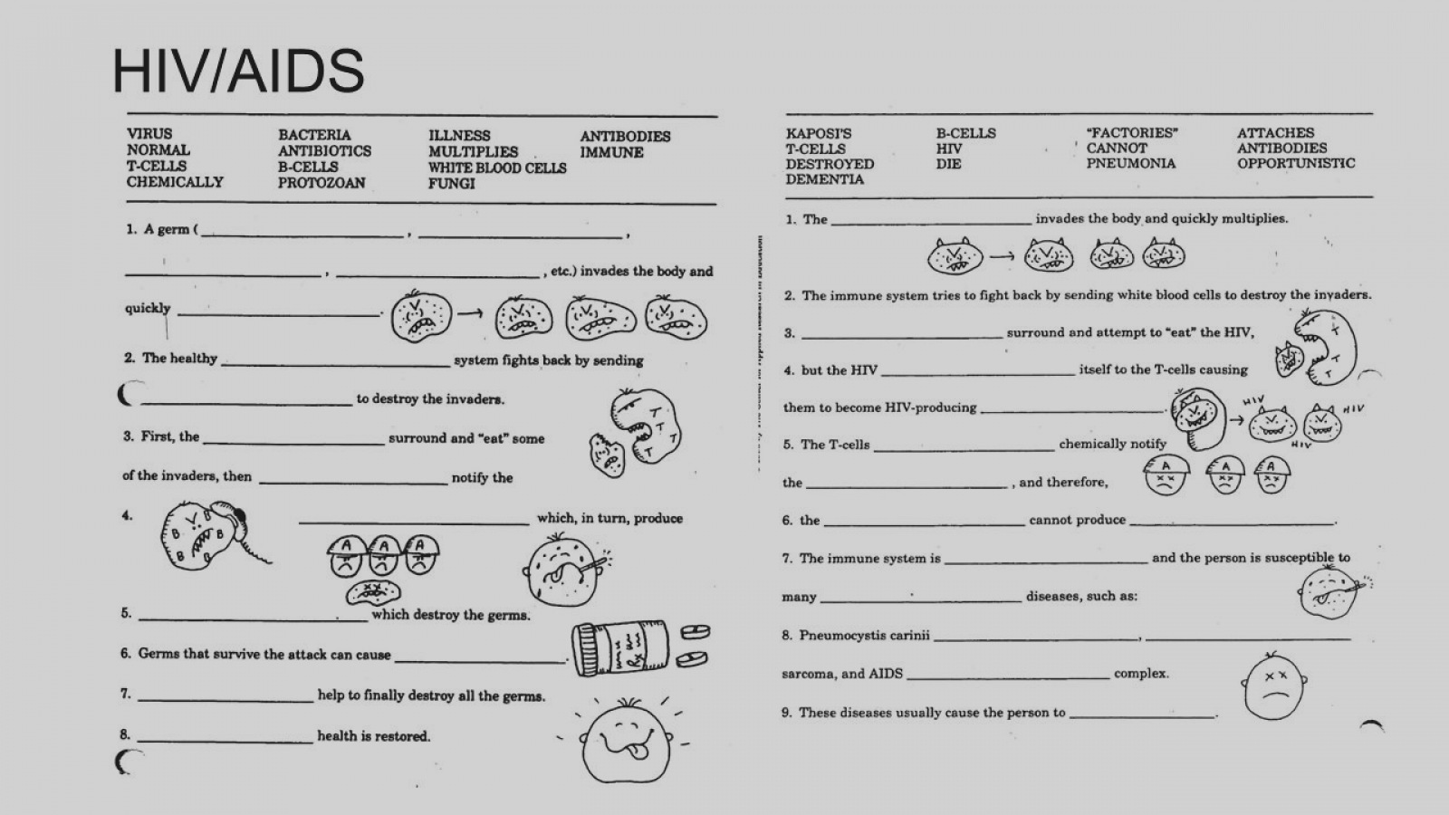 The Healthy Immune System Worksheets Answers
