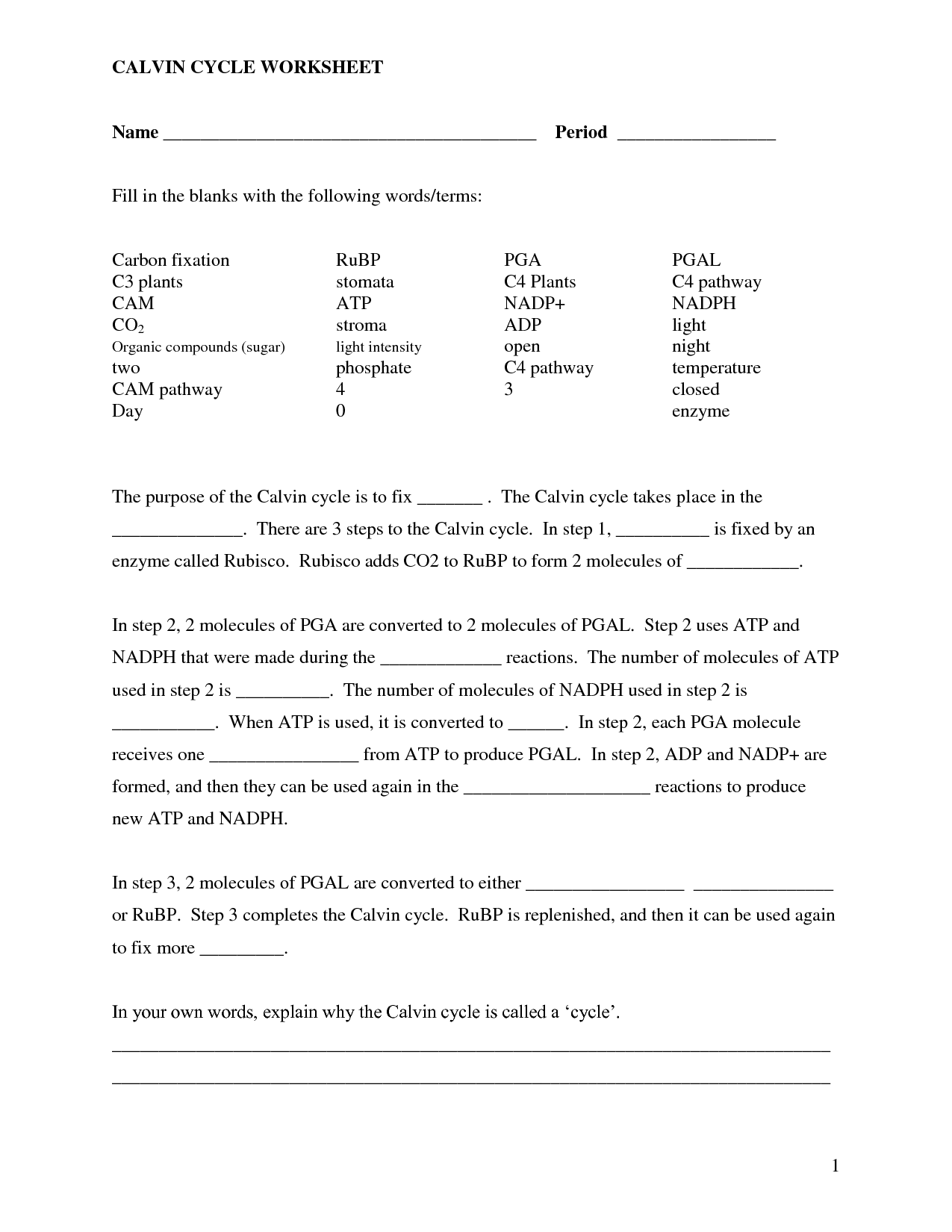 Cell Fill In The Blank Worksheet Worksheets Samples