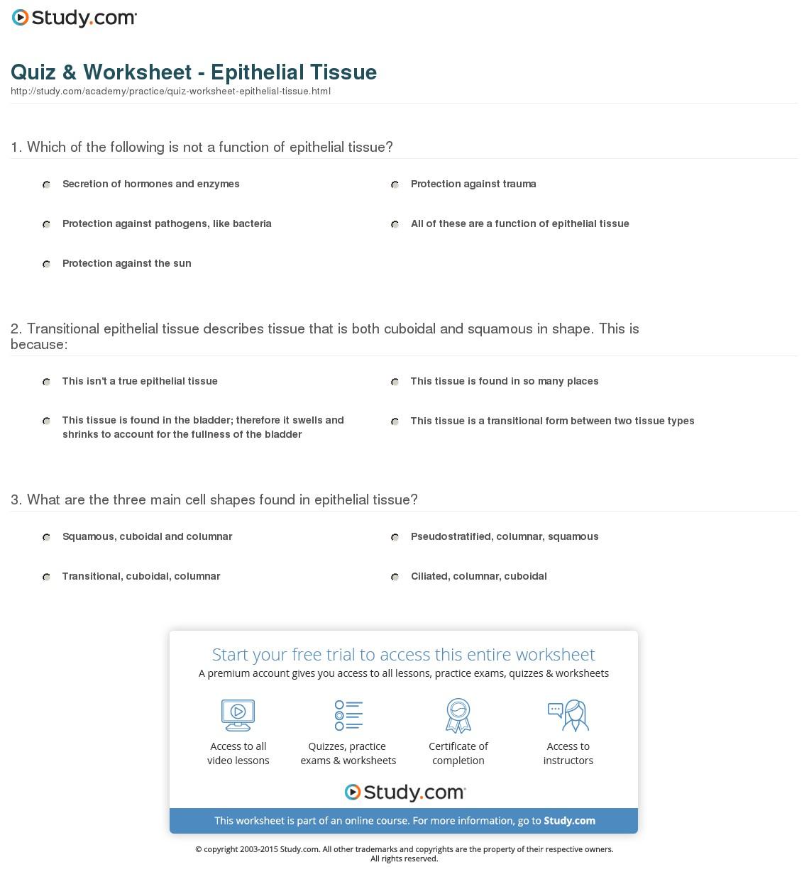 Epithelial Tissue Worksheets