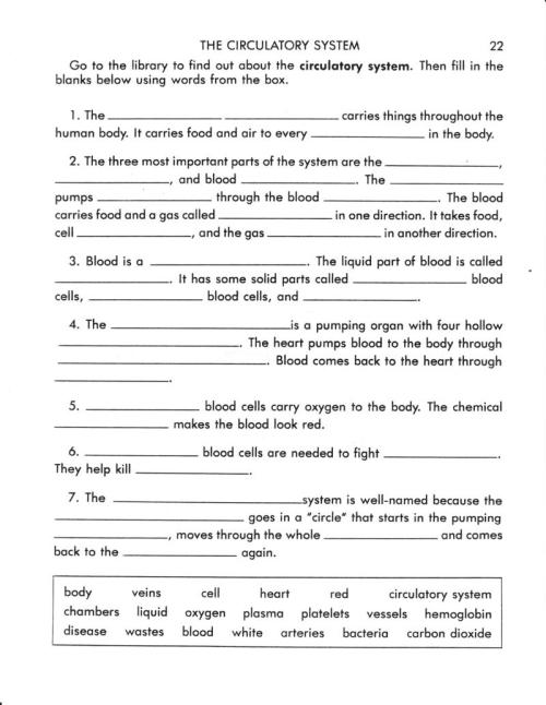 small resolution of 30 Human Circulatory System Worksheet Answers - Worksheet Project List
