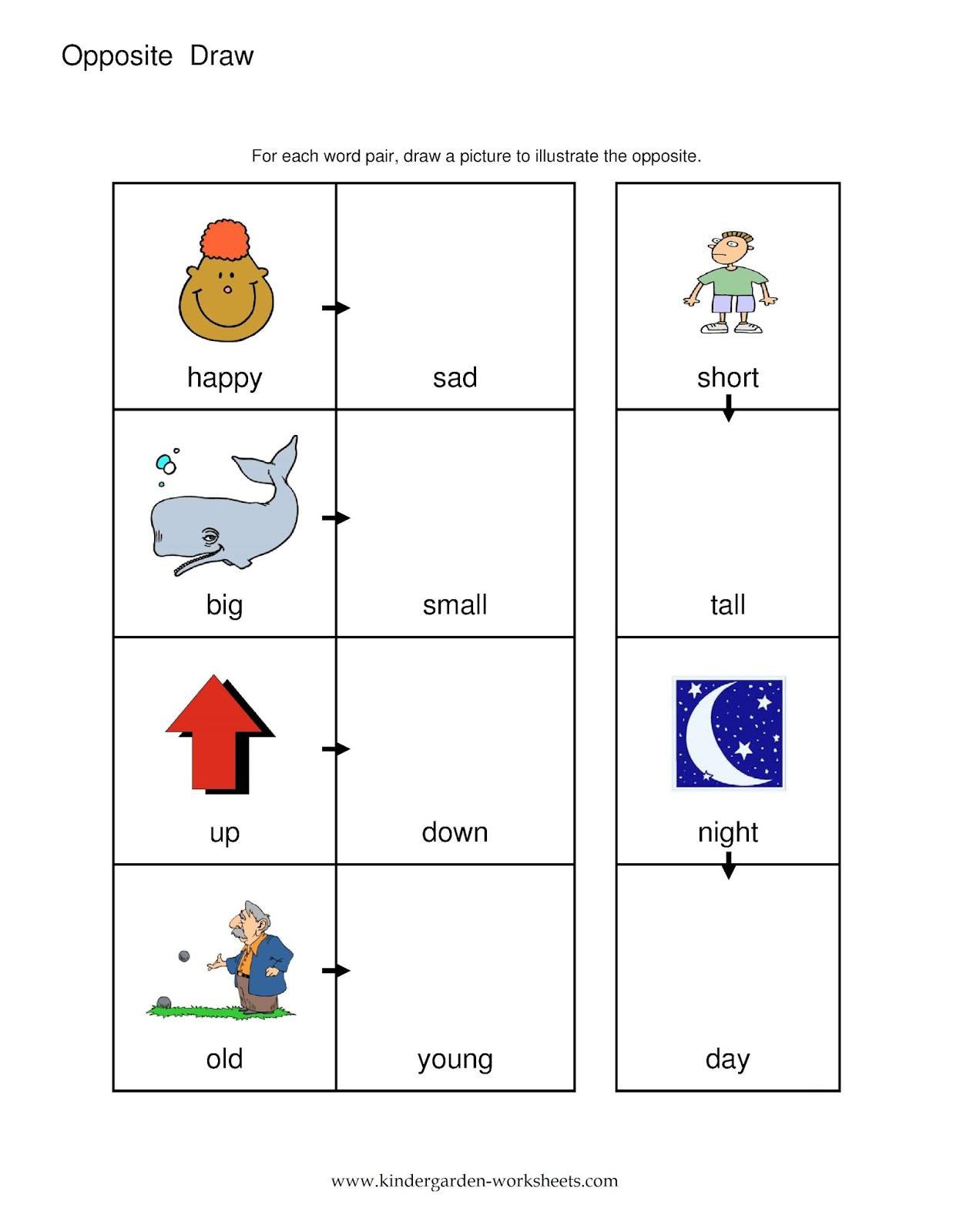 Opposites Worksheets Kindergarten
