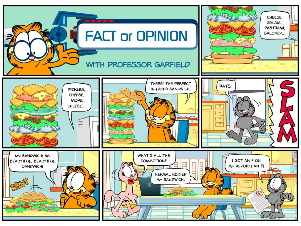 Fact And Opinion Worksheets Samples