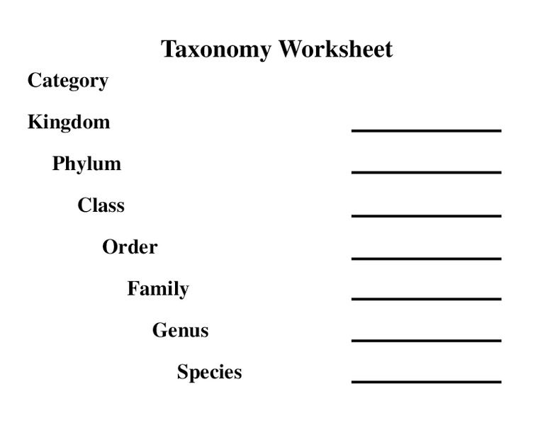 Taxonomy Classification Worksheets