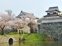 Castillo de Fukuoka