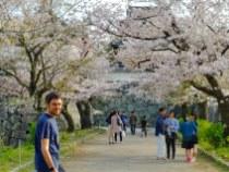 Entrada al castillo de Fukuoka