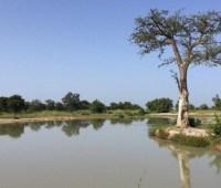 В национальном парке Бенина убили гида и похитили двух туристов