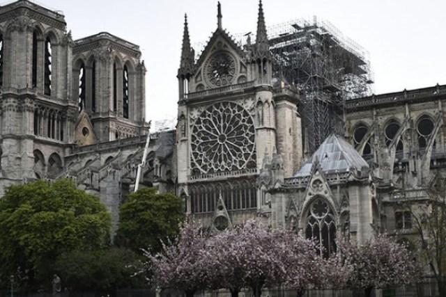 Уровень свинца в почве возле собора Нотр-Дам в десятки раз превышает норму