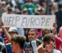 В этом году 206 тысяч человек подали прошение об убежище в ЕС