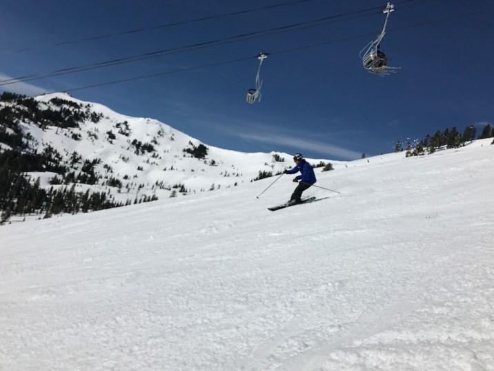(Photo: Oznorts | Skier: Shred Babcock)