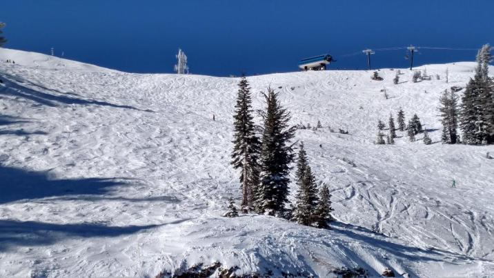 Alpine Bowl