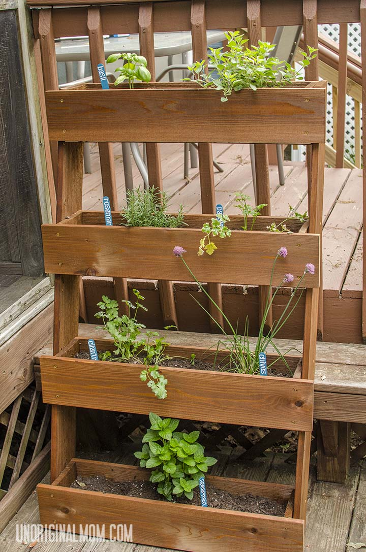 Building Herb Garden Box