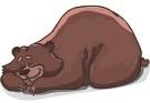 Un Orso in Campagna