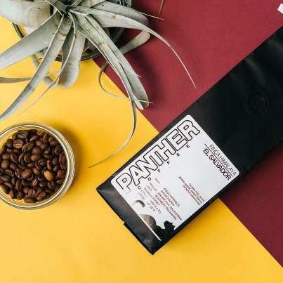 Panther Coffee El Salvador coffee with plant and jar of beans