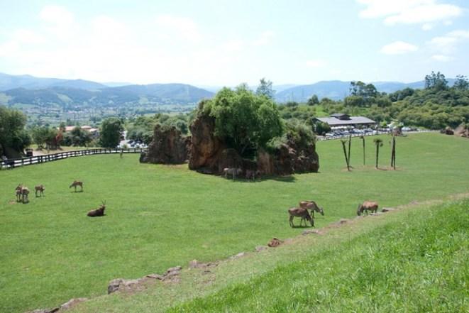 Parque Cabárceno Cantabria