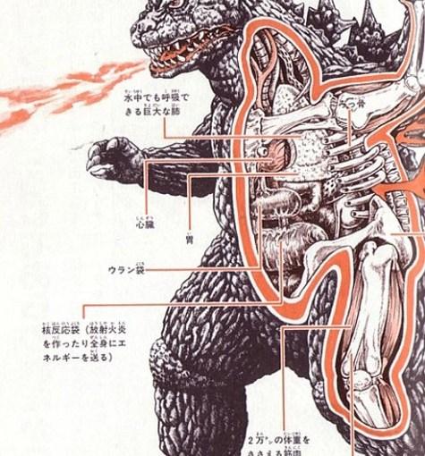 Anatomía de monstruos japoneses
