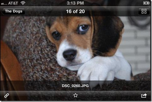 dropbox  1.5 for iOS, automatic upload -2- unpocogeek.com