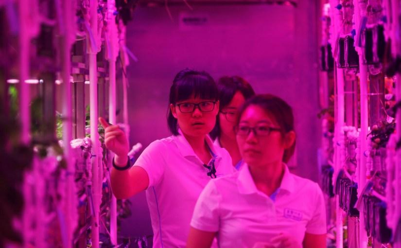 China comienza sus experimentos de largas estadías en el espacio y otros mundos