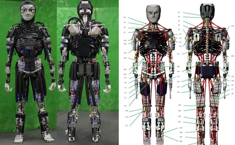 El humanoide con músculos casi humanos y que puede sudar