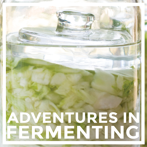 Adventures in Fermenting by An Unrefined Vegan