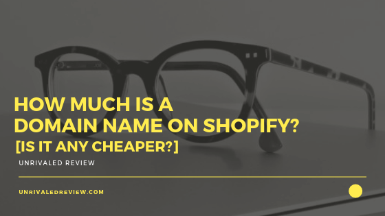 How Much Is A Domain Name on Shopify [Is It Any Cheaper]