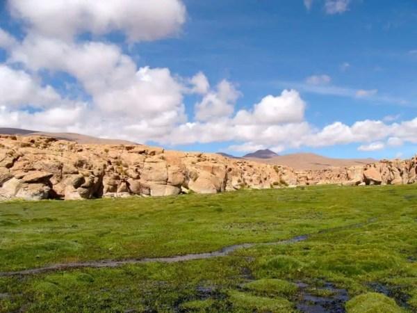 Marécages Bolivie Uyuni