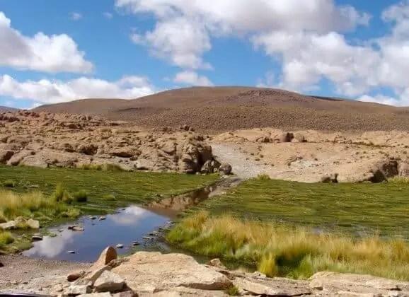 Route dans les marécages Bolivie Uyuni