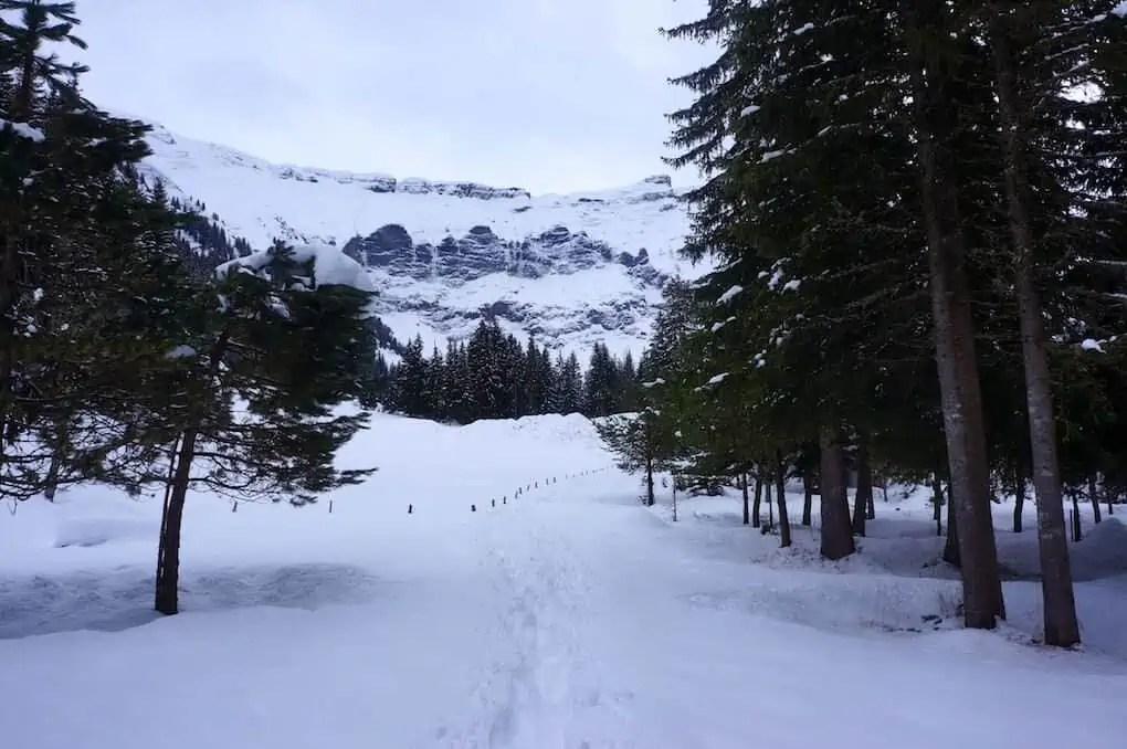 Savoie Grand Revard, Savoie Mont Blanc