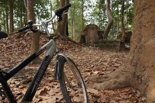 Vélo, Cambodge, Roluos