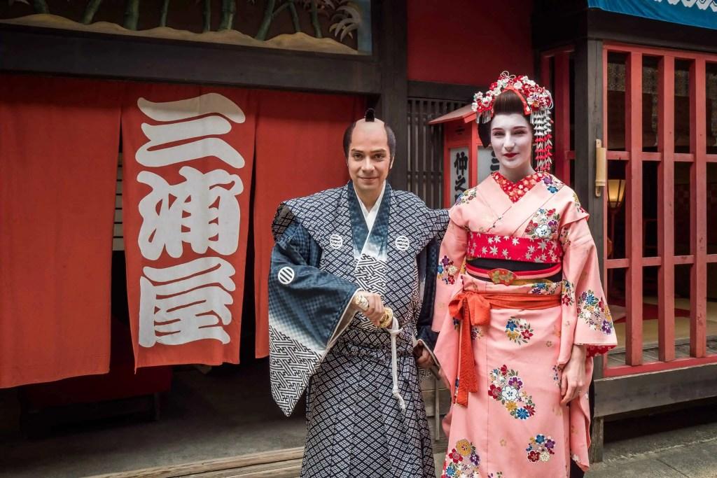 Japon, Kyoto, excursions, visites, jour, train, geisha