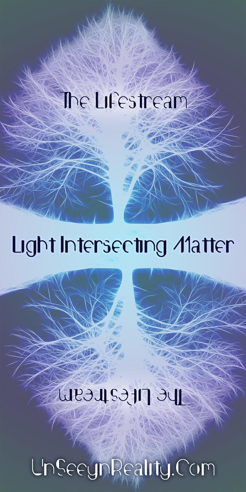 Light into Matter