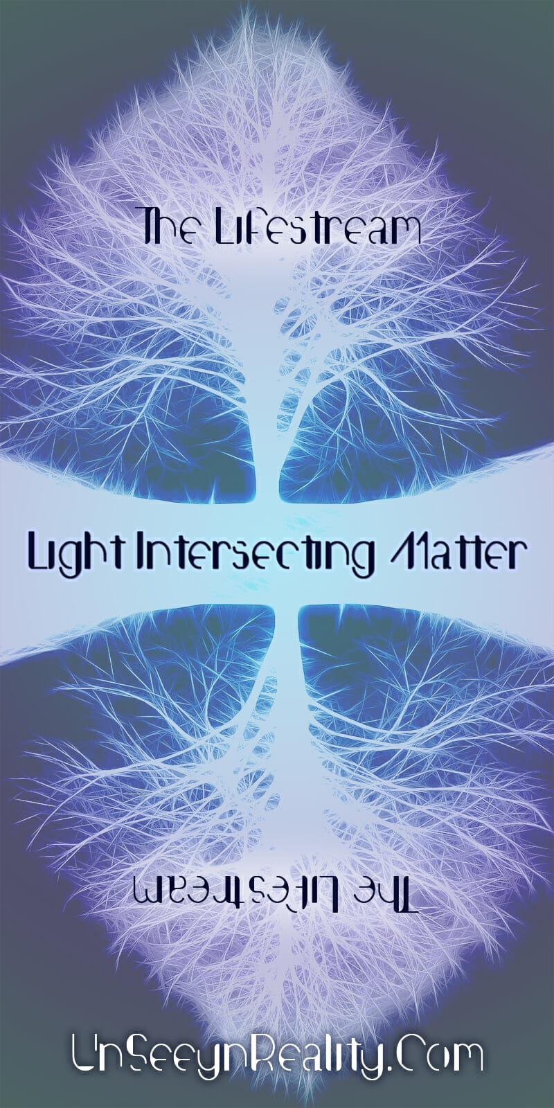 Light into Matter