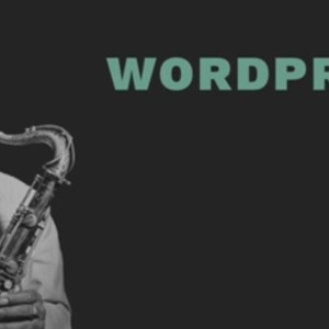 "Wordpress 4.5 ""Coleman"" est disponible"