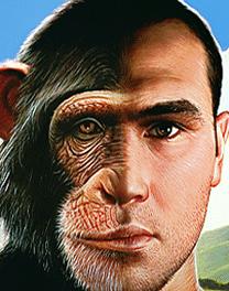 Smarter-Than-an-Ape