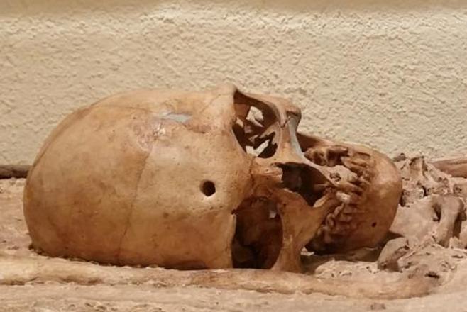 Cráneo de Moia, cámara