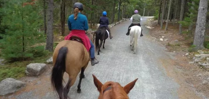 Parks to Ride Horses in Maine