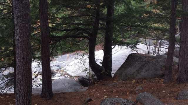 Step Falls waterfall hiking trail.