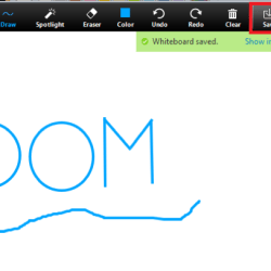 Using Zoom's Features