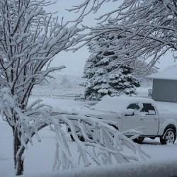 2017/08/8641702066 5e8f76e34f snow day 1