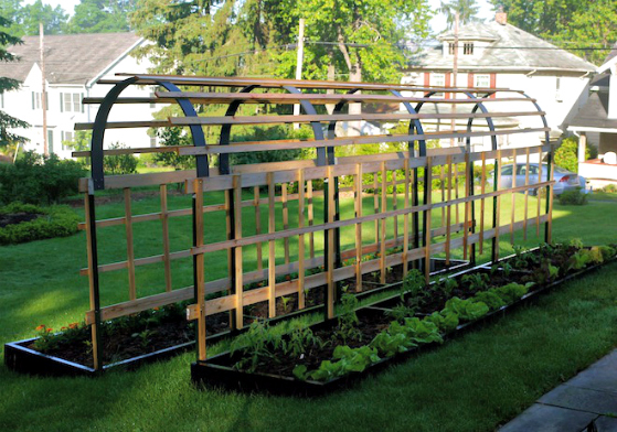 Vertical Vegetable Garden DIYs And How Tos