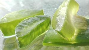 Aloe Ferox Premium Prezzo