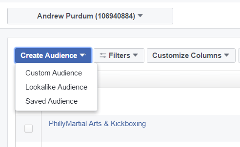 facebook custom audience