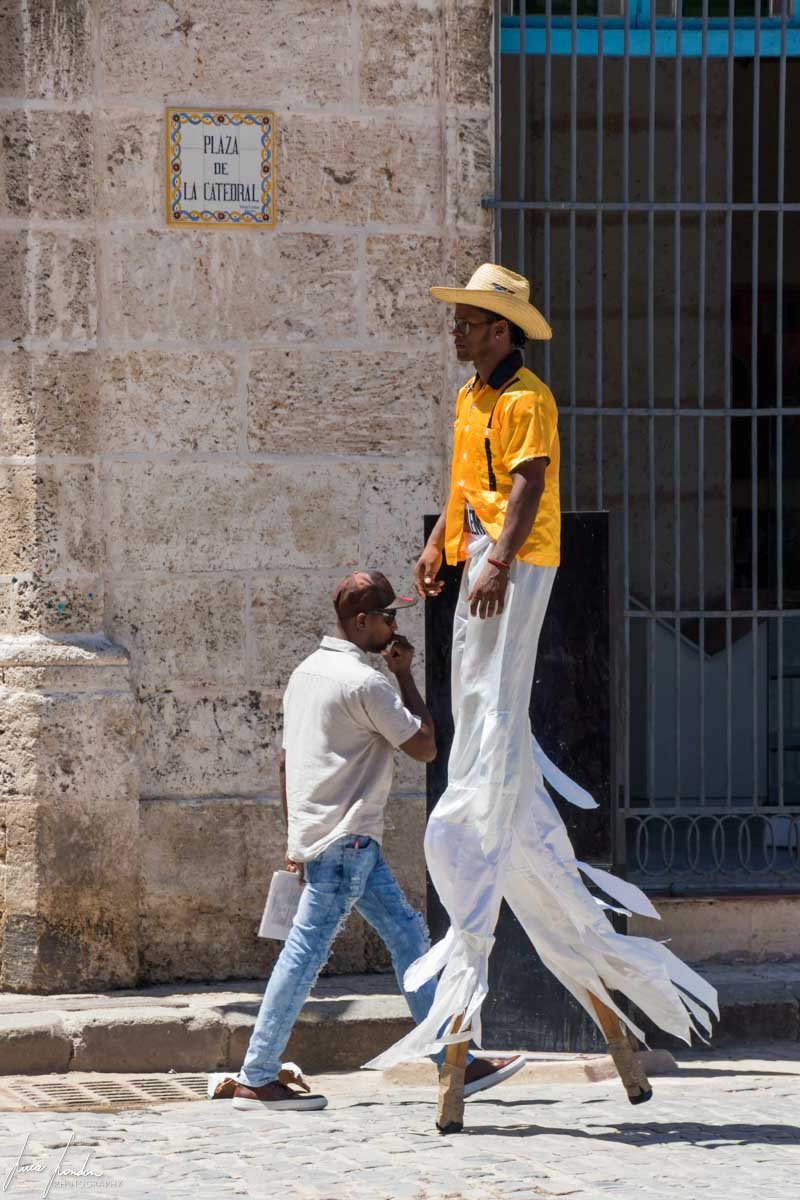 Cosa vedere all'Avana: Catedral de San Cristóbal de La Habana