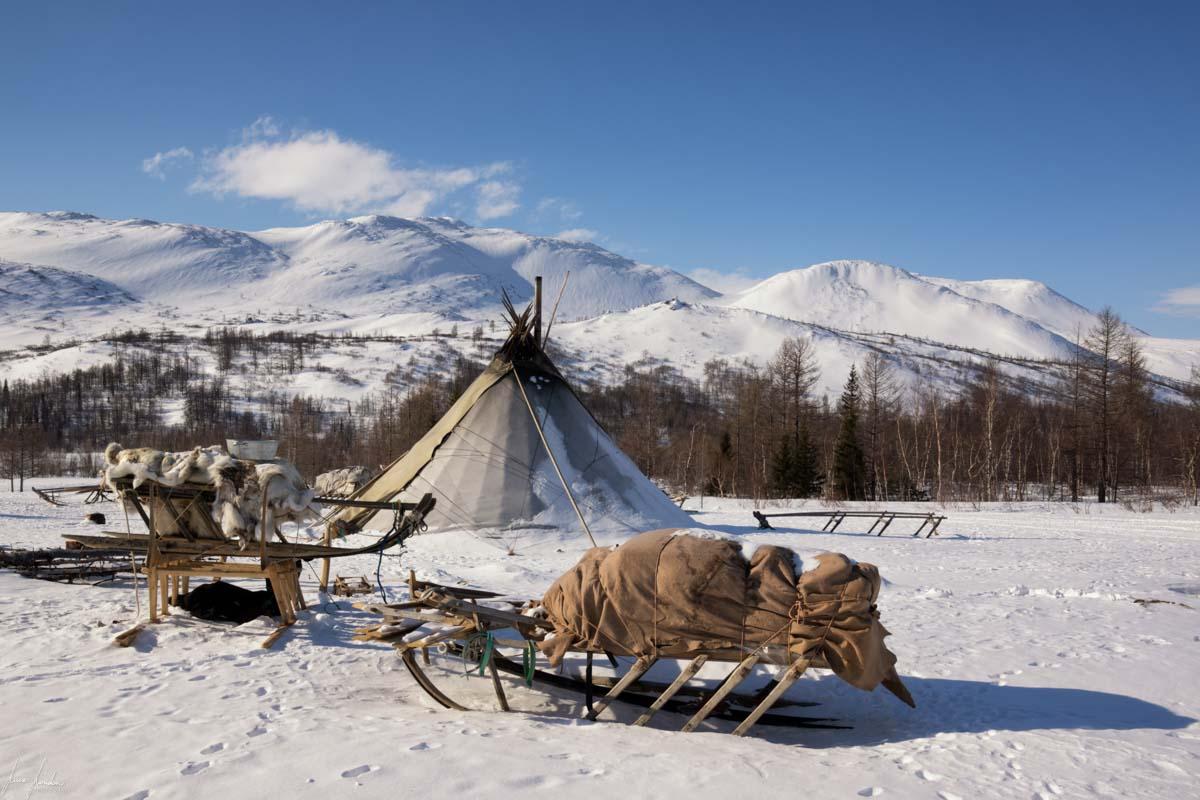 Nenets della Siberia: il chum, la loro tenda