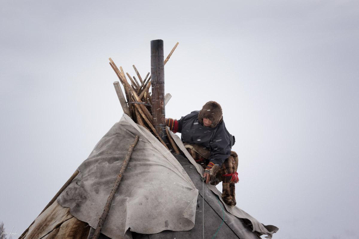 Nenets della Siberia: manutenzione per mettere in sicurezza il chum contro le bufere di neve!