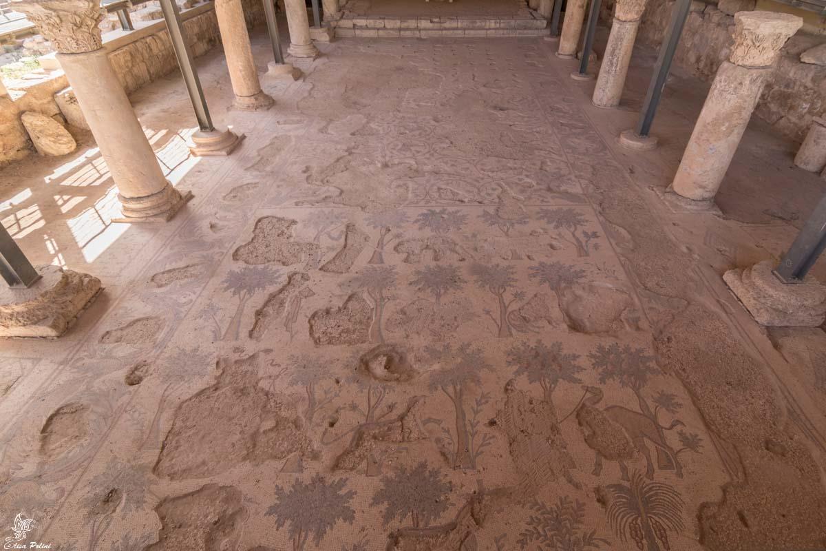 Itinerario in Giordania: Mosaici ritrovati