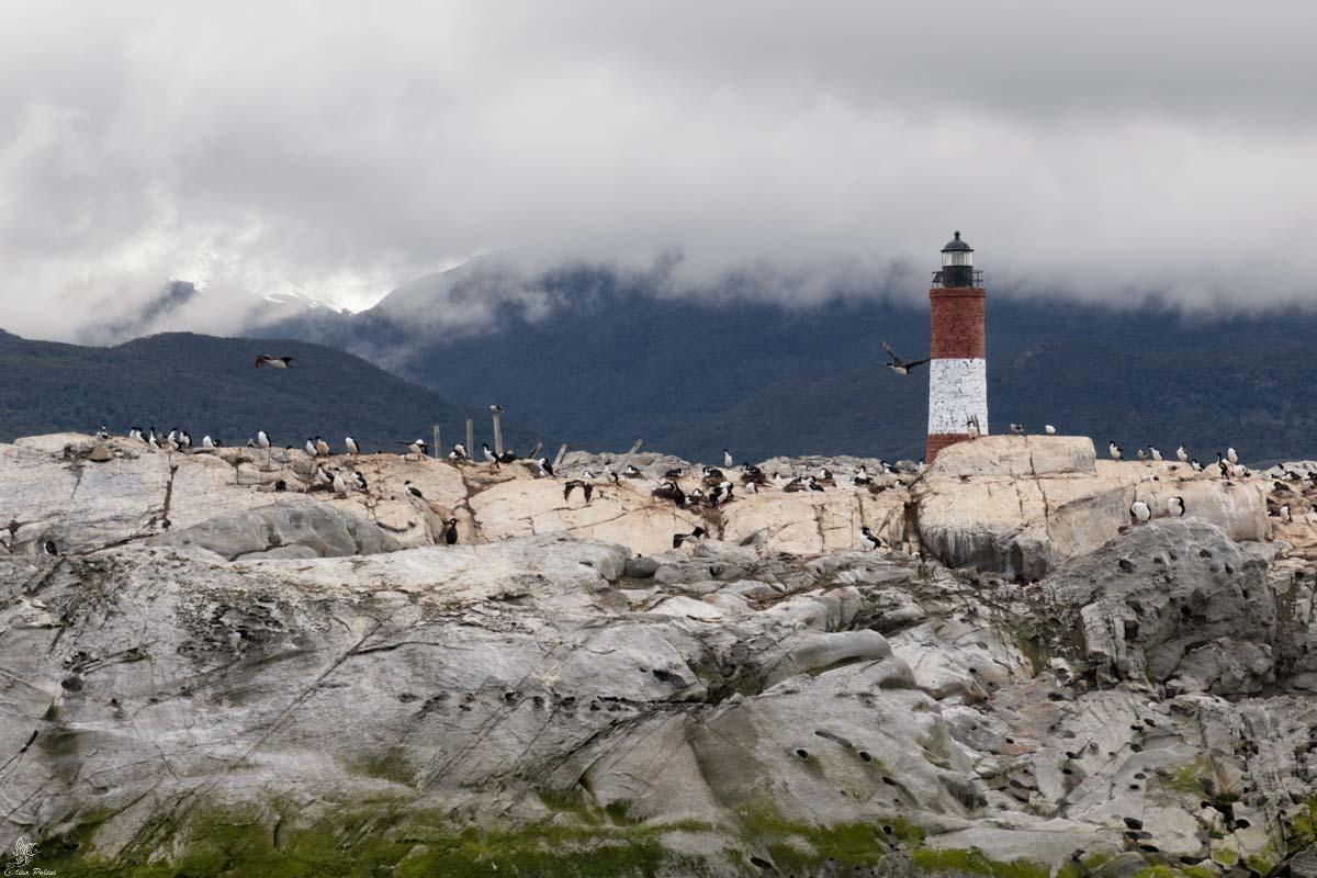 Canale di Beagle: Faro di Les Eclaireurs