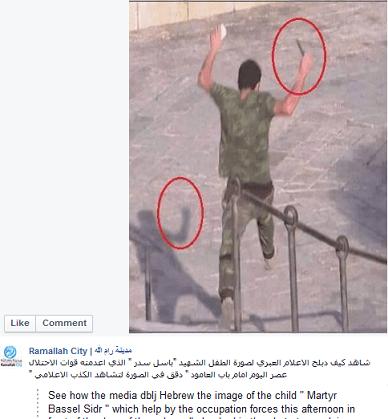Maen Dajani - screenshot original image martyr