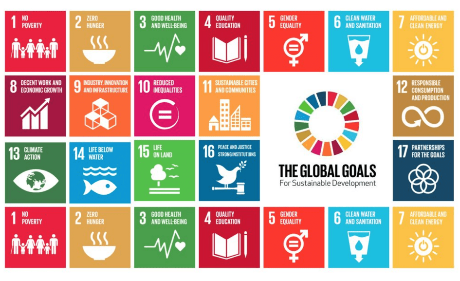 Making the Sustainable Development Goals Known to All   UN-Water